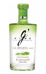 gin-g-vine-magnum