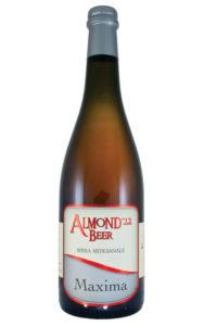 birra-almond-maxima
